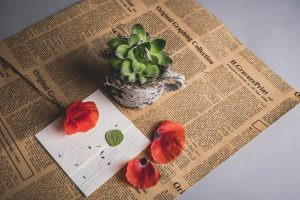 white invitation on a newspaper with rose flower and petals 300x200 - white invitation on a newspaper with rose flower and petals