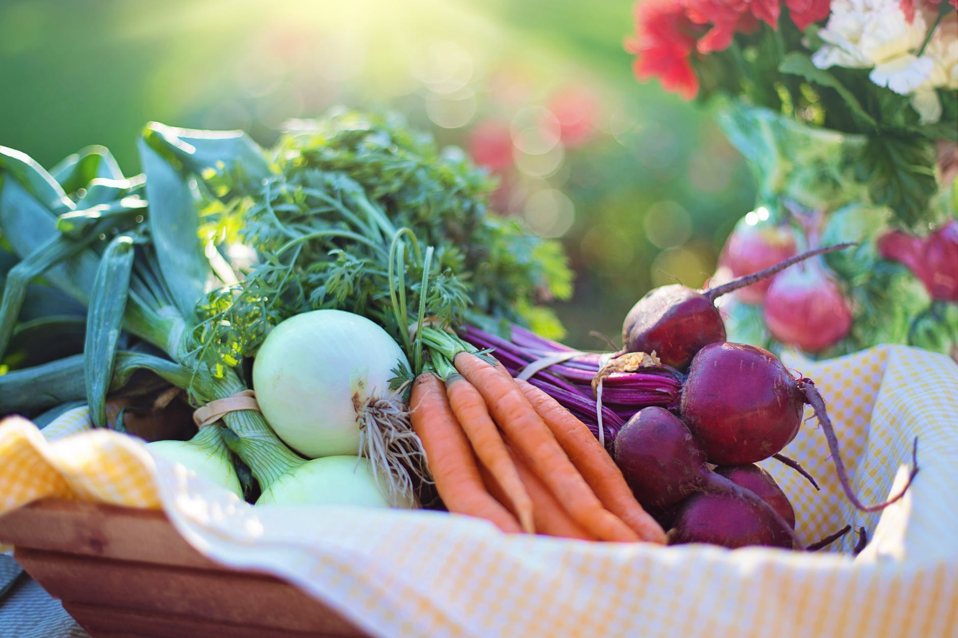 a basket of fresh vegetable for nutrition day - Top Child Care Marketing Tips Using Food